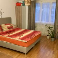 Izdajem nameštenu sobu u centru Lucerna